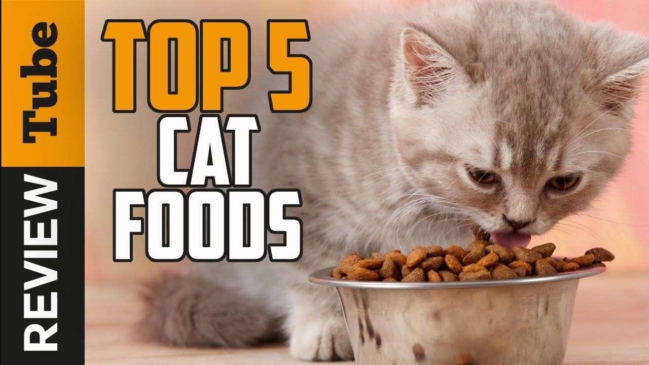 Cat Food: Best Cat Food 2018 (Buying Guide)