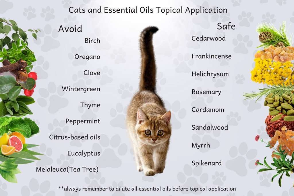 is it safe to diffuse thieves around cats catwalls