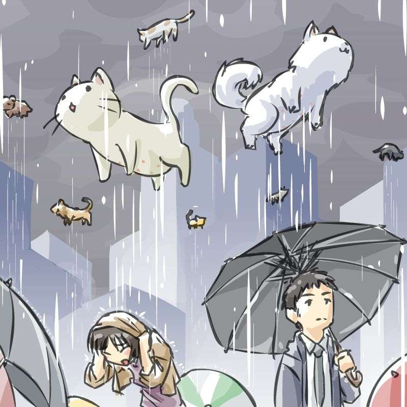 Raining Cats And Dogs Idiom Meaning